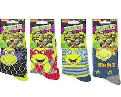 Turtles strumpor 1-pack