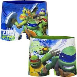 Turtles Badbyxor