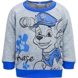 Paw Patrol Sweatshirt