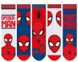 Spiderman 5-pack strumpor