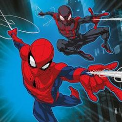 "Spiderman magisk Handduk ""magic towel"" 30*30"