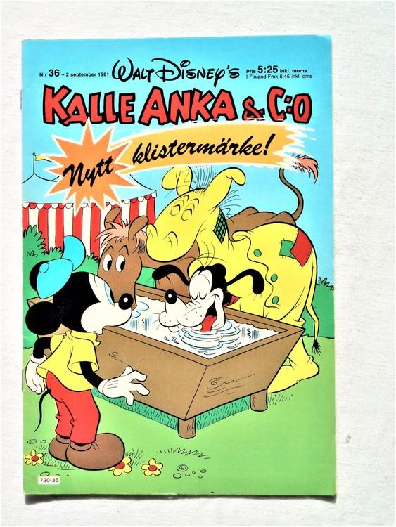 Kalle Anka&Co nr36,1981 bättre skick,lite småskador finns.