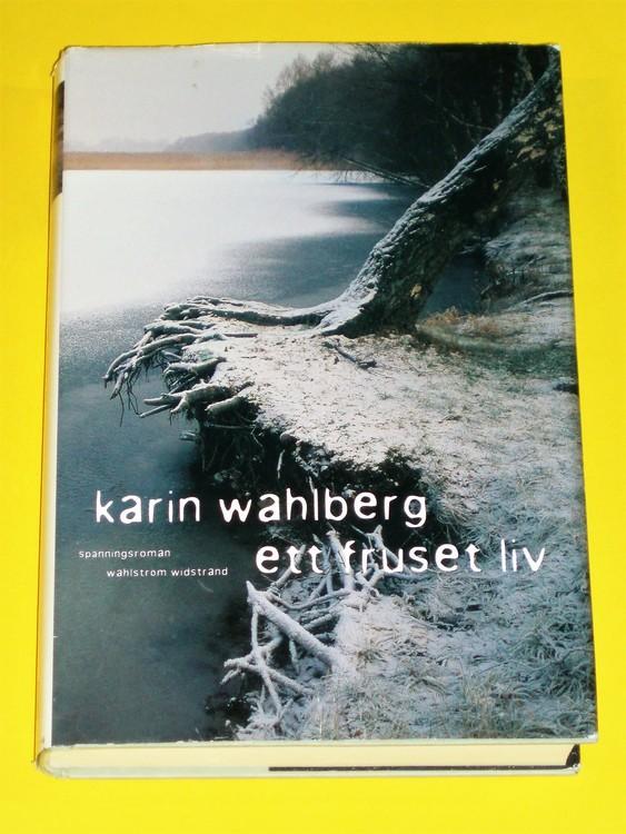 Karin Wahlberg ,Ett fruset liv är en spänningsroman från 2003