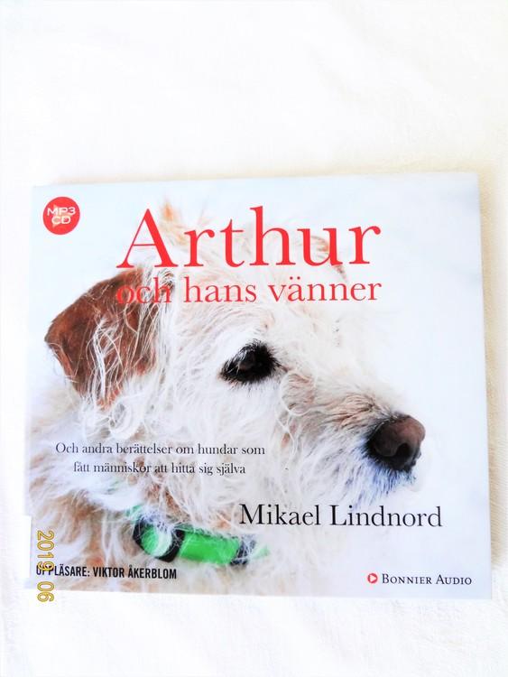 """Mikael Lindnord """"Arthur och hans vänner"""" mycket bra skick begagnad."""