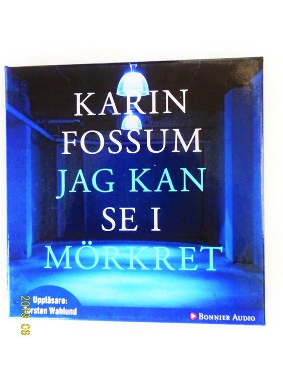 """Karin Fossum """"Jag Kan Se i Mörkret"""" mycket bra skick Begagnad."""
