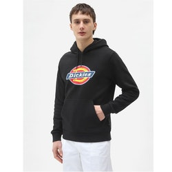 Hoddie ICON logo Black - Dickies