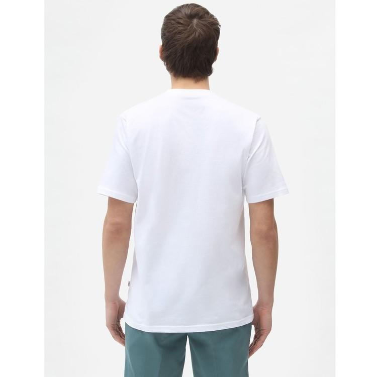 T-Shirt ICON logo White men - Dickies