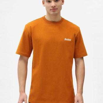 T-Shirt Bettles Pumpkin Spice - Dickies