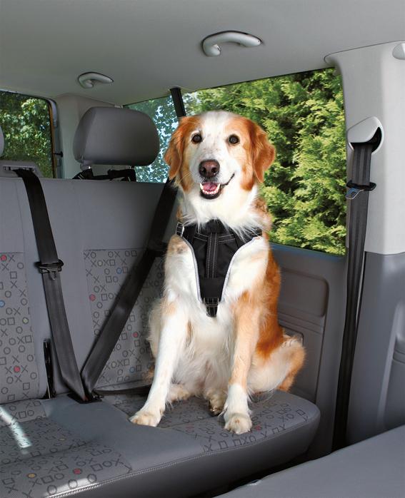 Bilsele Dog Protect, L: 65-80 cm/25 mm, svart