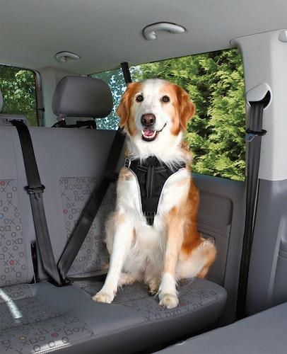 Bilsele Dog Protect, XL: 80-100 cm/25 mm, svart