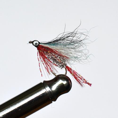 Roach Fry #10