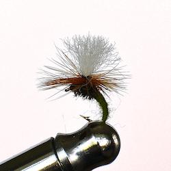 Klinkhammer Olive torr fluga