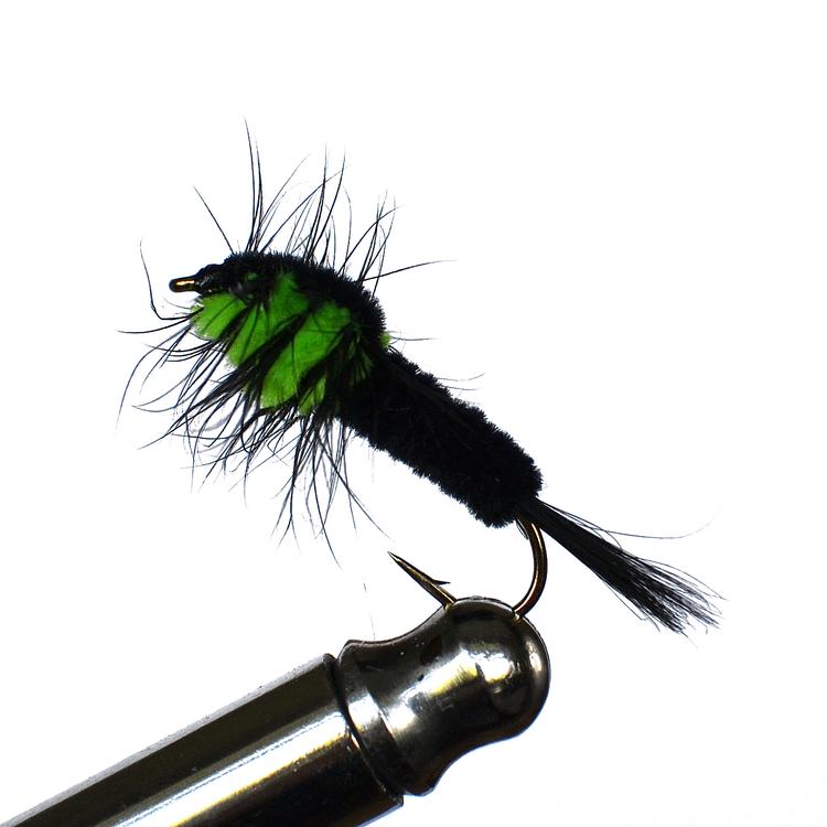 Montana Green