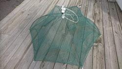 Paraplymjärde