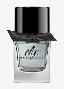 Mr Burberry EdT 50 ml