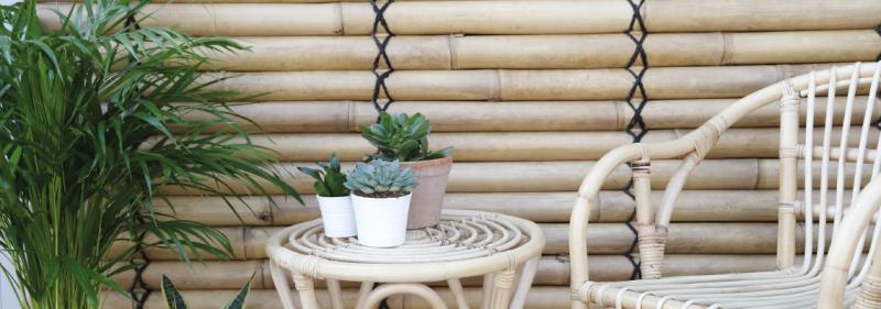 Bambuväggar - Sommarens hetaste inredningstips!