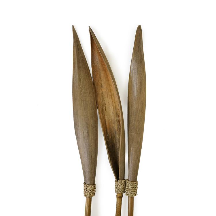 Näbild på bambuvass