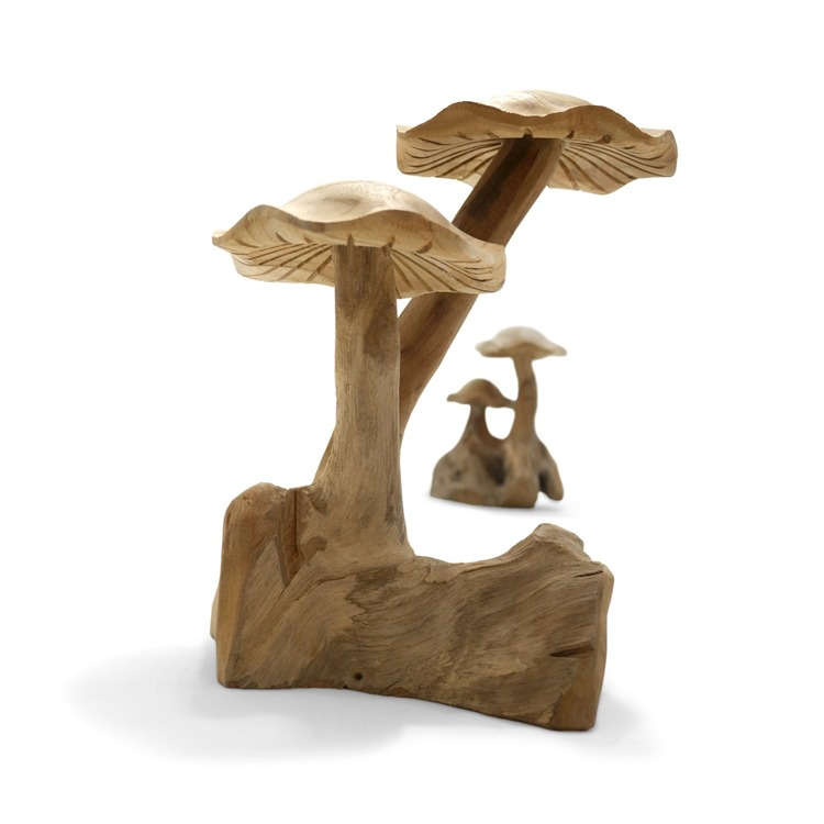 RAW svampar i trä