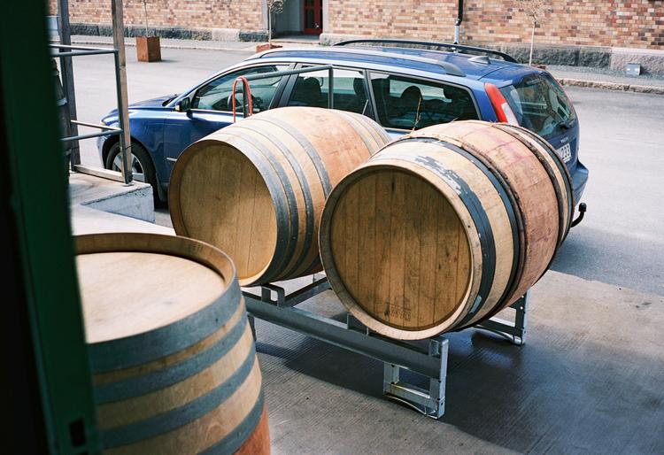 Bli fatägare 2021 - Pinot Noir från Pfalz