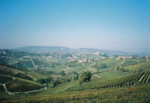 Bli fatägare 2021 - Barbera från Piemonte
