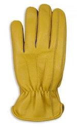 Gul handske i hjortnappa-Dallas V5
