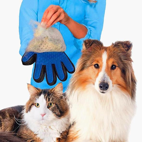 Hund/Katt Borsthandske  Höger