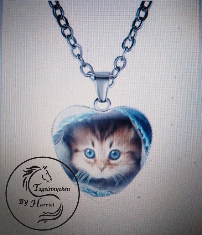 Halsband hjärta katt