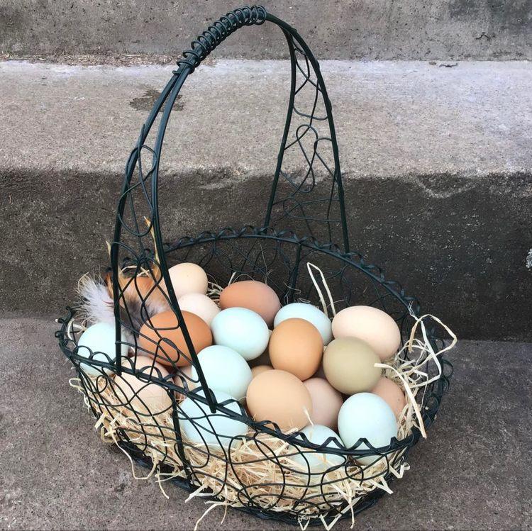 Ägg från trädgårdshöns, 12-pack.