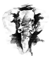 ELEPHANT B&W POSTER