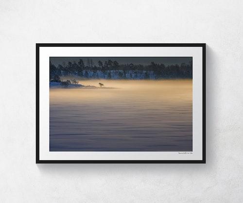 Morgondis vid Fröfjorden