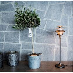 Belid Picasso B4282 35,5cm Bordslampa LED Oxid