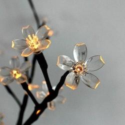 LightsOn Bloom 100 LED