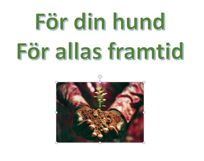 Vill du plantera ett träd?