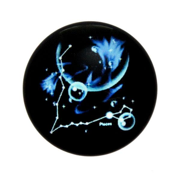 Stjärntecken Fiskarna/Pisces Cabochon 25mm 1st