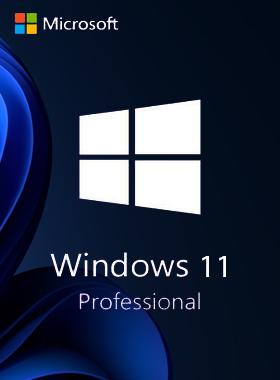Microsoft Windows 11 Pro (Retail ESD)