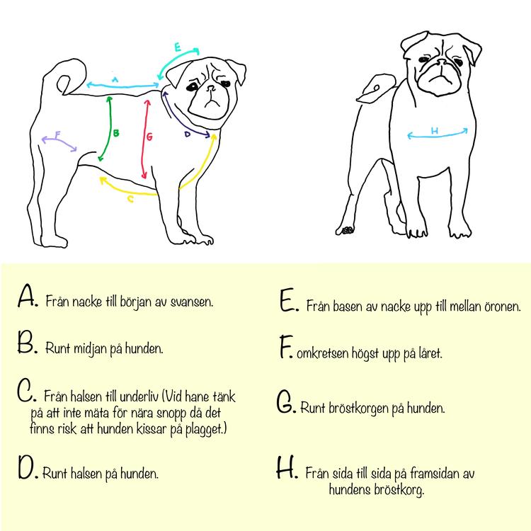 Fodrad Regnponcho hund