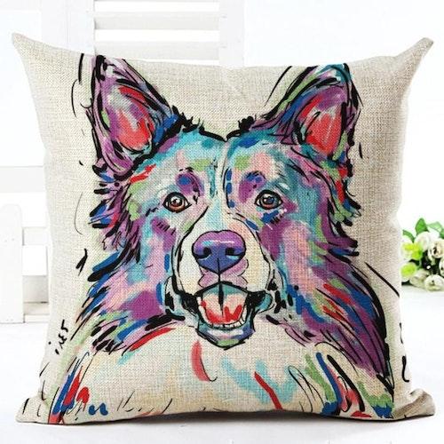 Djur - Hund 7