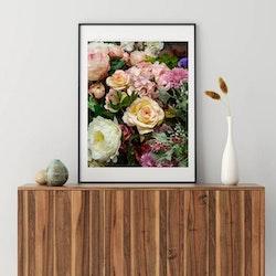 Posters - Rosor