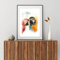 Posters - Papegojfåglarna