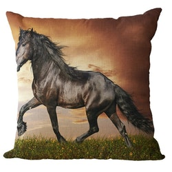 Kuddfodral - Djur - Häst 6
