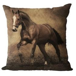 Kuddfodral - Djur - Häst 7