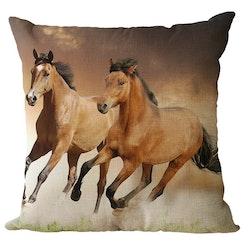 Kuddfodral - Djur - Häst 8