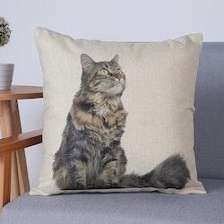 Kuddfodral - Djur - Katt 1
