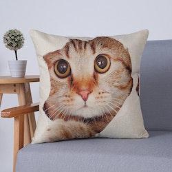 Kuddfodral - Djur - Katt 3