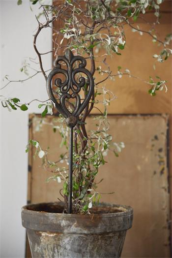 Växtstöd vintage av järn