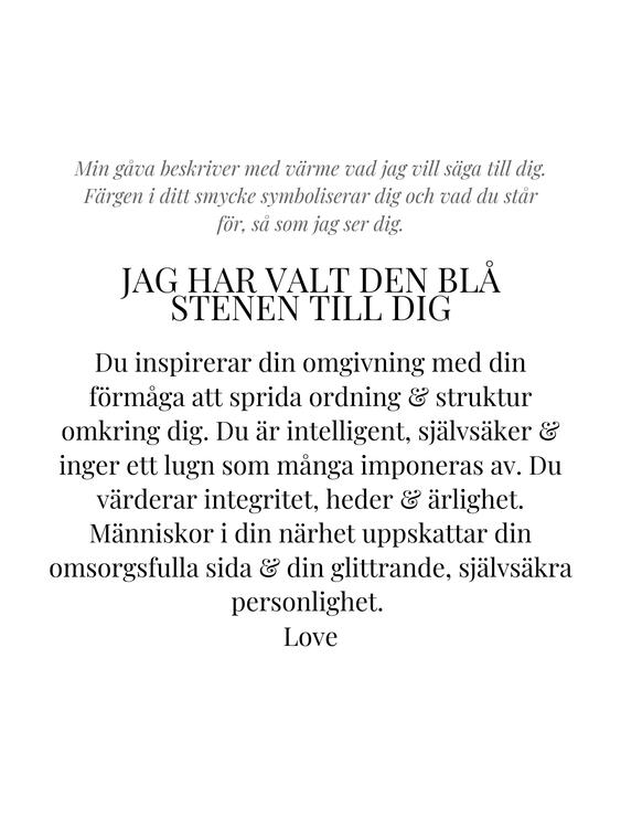 STAR OF SWEDEN   Långa örhängen   Silver   Blå sten