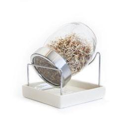 Spirebeholder i glas
