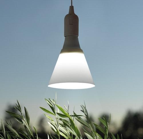 Växtbelysning för Micro Leaf