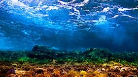 Ocean Landscape - Gran Canaria 2018