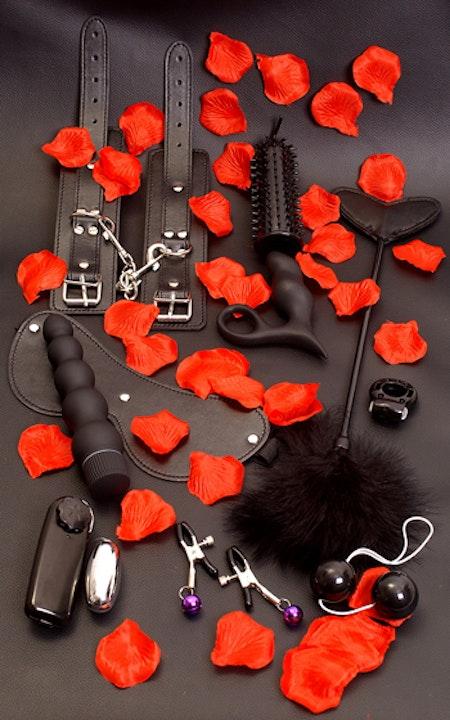 Amazing Pleasure Sex Toy Kit